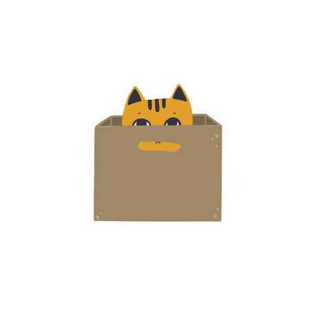 The cat is hiding in a cardboard box. Vector illustration in simple cartoon style