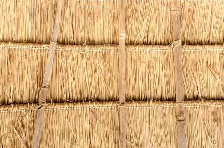 thatched: Thatched roofs