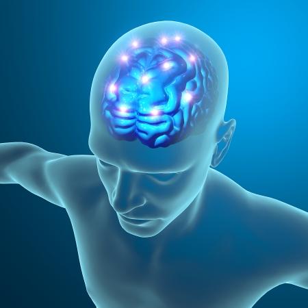 neurona: Cerebro neuronas sinapsis Foto de archivo