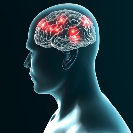 Brain neurons synapse photo
