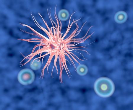 Vírus baktériumok mikroszkóp alatt látható
