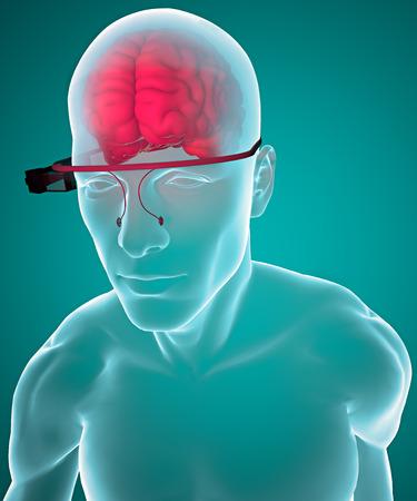 enquiry: Interactive glasses and brain, anatomy