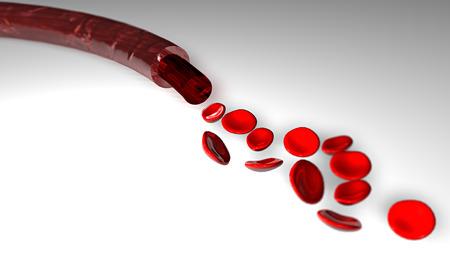Szakasz egy véna vérrel és vörös vérsejtek egy síkban