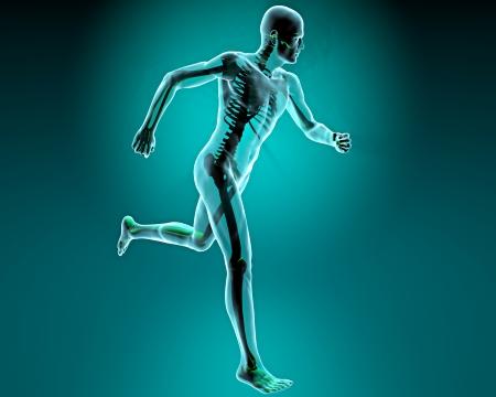 Ember, futás, röntgenvizsgálata emberi test