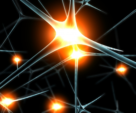 Brain neurons synapse functions ilustration