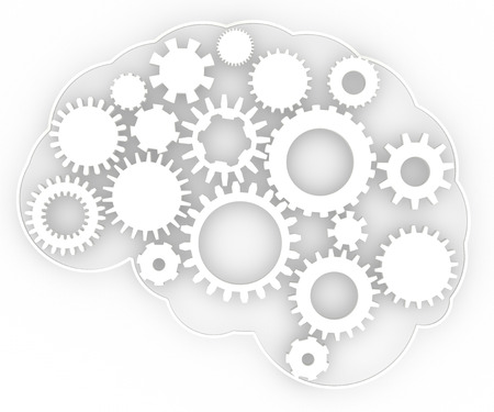 Brain anatomy of the human body gear ideas
