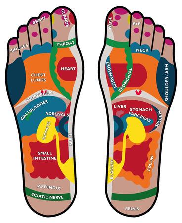 반사 요법과 통증을 치료하는 방법을 반사 요법