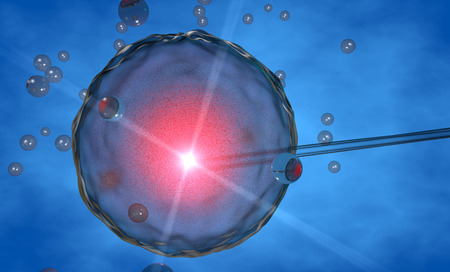 Ovum, artificial insemination, artificial  photo
