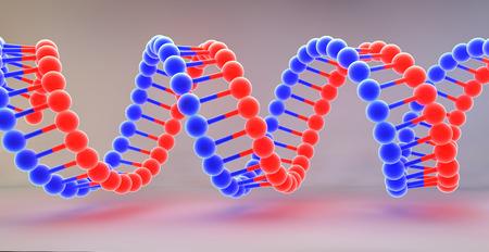Stranded DNA molecules
