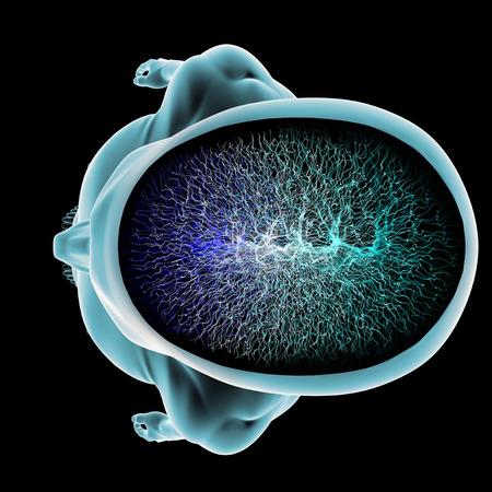 Sekcja funkcji synaps neuronów mózgu ciała