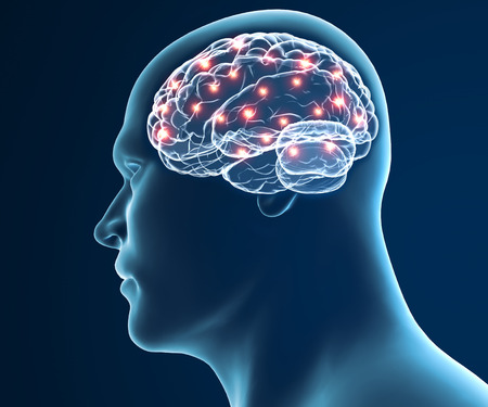 Brain neurons synapse functions 스톡 콘텐츠