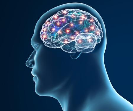 Brain neurons synapse functions Foto de archivo