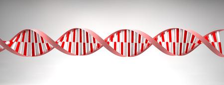 nucleotides: H�lice de ADN estructura celular mol�cula