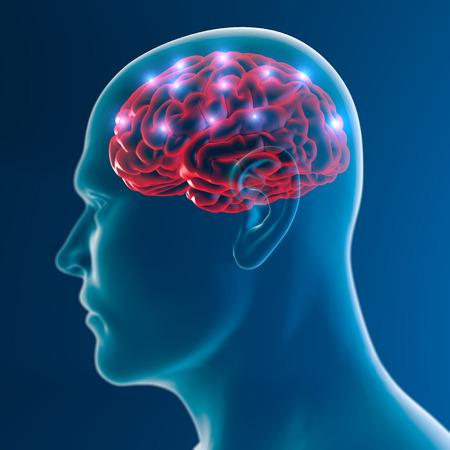 Brain neurons synapse