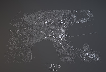 satellite view: Tunis map, satellite view, city Tunisia, 3d, black and white