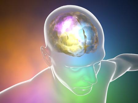 mente humana: Las neuronas del cerebro sinapsis, cuerpo anatomía, perfil de la cabeza, enfermedad Foto de archivo