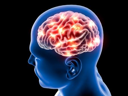 mente humana: Las neuronas del cerebro sinapsis, cuerpo anatom�a, perfil de la cabeza, enfermedad Foto de archivo