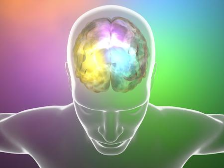 脳の病気ヘッド プロファイル、解剖体ニューロンのシナプス 写真素材