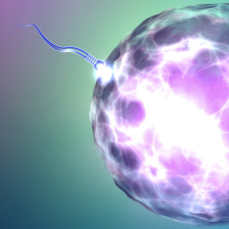 impotence: Conception ovum and sperm Stock Photo