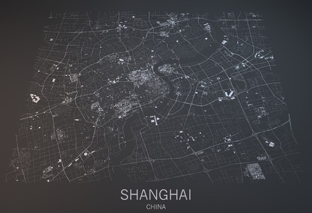 Shanghai map, satellite view, section 3d, China