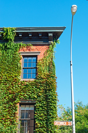 ivy: New York, a house covered in ivy in Greenwich Village