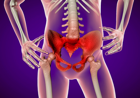 rupture: Pain in the hip and pelvis, spine, human body