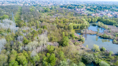 brackish water: Nature and landscape: Aerial view of a forest and lakes, and green trees in a wild landscape. Groane Park, Mombello (Laghettone) Limbiate, Milano, Italy