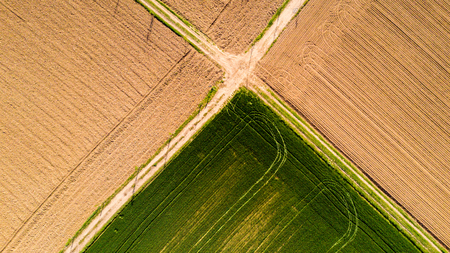 pesticides: Nature and landscape: Aerial view of a field, cultivation, green grass, countryside, farming, dirt road