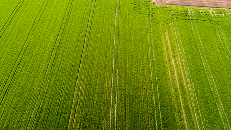 Nature and landscape: Aerial view of a field, cultivation, green grass, countryside, farming, dirt road