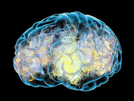 Cerebro, sinapsis, neuronas, enfermedades degenerativas, Parkinson, Alzheimer, representación 3D. Sinapsis conexiones en el cerebro