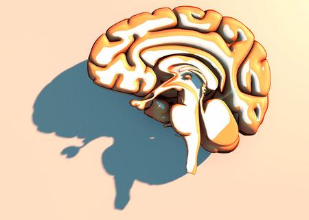 Brain, neurons, synapses, neural network circuits of neurons, degenerative diseases, Parkinsons, 3d rendering