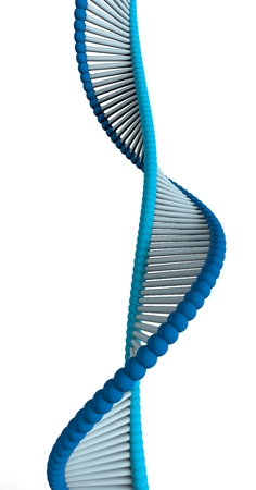 DNA, Deoxyribonucleic acid is a thread-like chain of nucleotides carrying the genetic instructions used in the growth, development and functioning of the known living organisms and many viruses. DNA helix Stock Photo