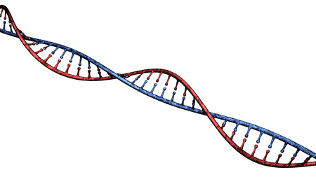 DNA, Deoxyribonucleic acid is a thread-like chain of nucleotides carrying the genetically related organisms and many viruses. DNA helix Stock Photo