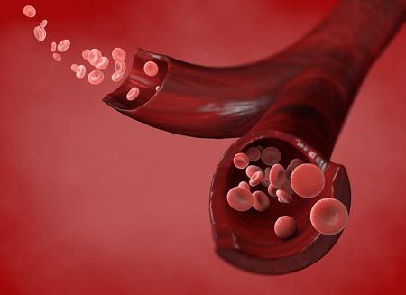 Globules rouges, cellules érythrocytaires, flux de globules rouges à l'intérieur de la veine, section d'une veine, rendu 3d