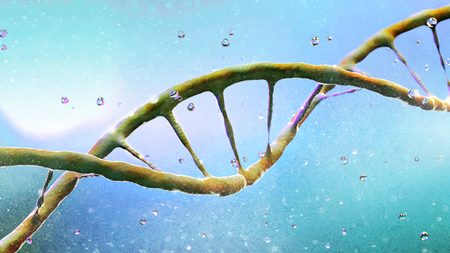 DNA, Deoxyribonucleic acid is a thread-like chain of nucleotides carrying the genetic instructions used in growth, development, reproduction of organisms and many viruses. DNA helix. 3d render Banco de Imagens - 124985106