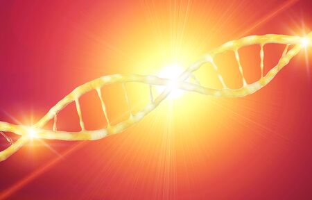 DNA, Deoxyribonucleic acid is a thread-like chain of nucleotides carrying genetic instructions, growth, functioning and reproduction of all known living organisms and many viruses. DNA helix, 3d render Banco de Imagens - 124985562