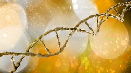 DNA helix, Deoxyribonucleic acid is a thread-like chain of nucleotides