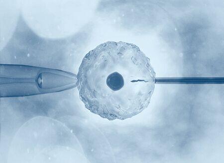 La fecundación artificial o asistida es el proceso mediante el cual se realiza artificialmente la unión de gametos, mediante observación al microscopio, renderizado 3d Foto de archivo