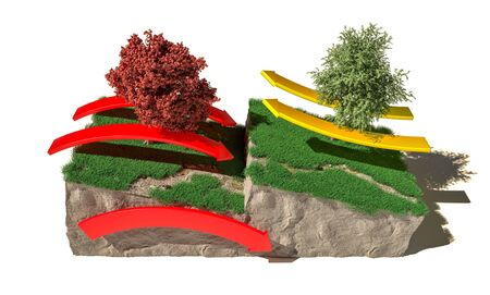 Different types of plate boundaries: convergent boundaries, terrain section, 3d render. Tectonic plates, side sliding margin, earthquake