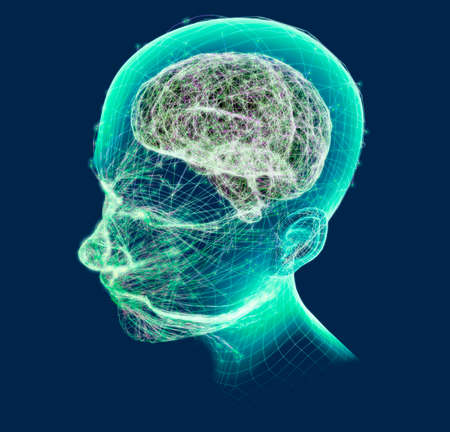 Neurology, philosophy: connections, the development of thought and reflection, the infinite possibilities of the brain and mind. Human anatomy. Digital reality, artificial consciousness. 3d render Stok Fotoğraf