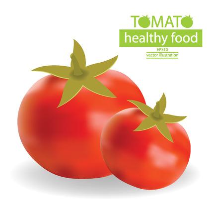 Tomato vector illustration Vector