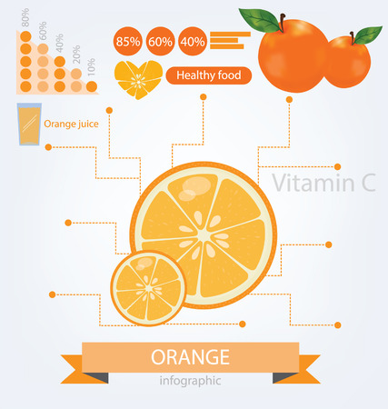 Orange  infographics  fruits illustration