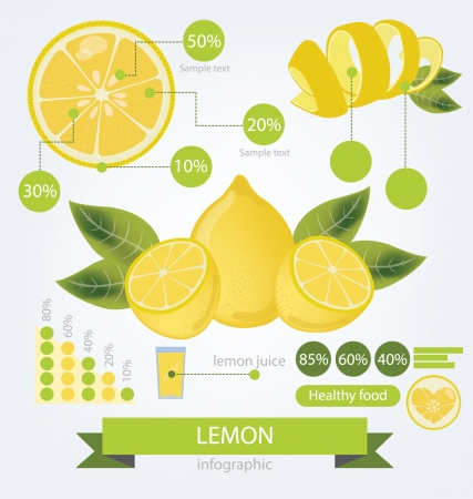 Lemon  info graphics  fruits illustration  Vector