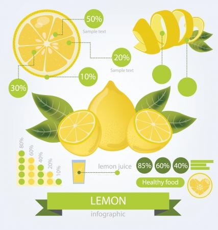 lemon slice: Lemon  info graphics  fruits illustration