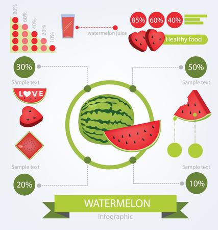 Watermelon  infographics  fruits vector illustration  Vector