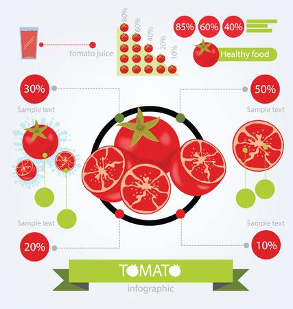 Tomato  info graphics  fruits illustration  Vector