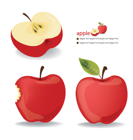 apple red: Red Apple vector illustration