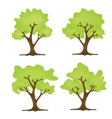 broad leaved tree: Tree vector illustration
