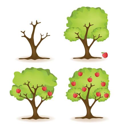 green apple slice: Apple tree vector illustration Illustration