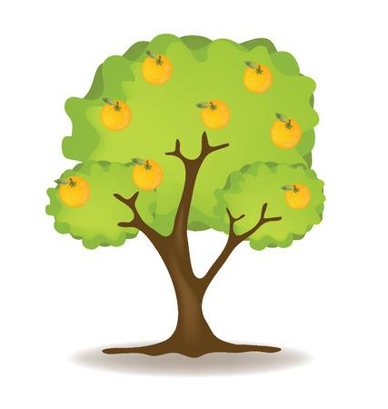 Vecteur oranger illustration Banque d'images - 24862870